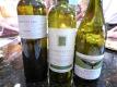 wine photo4